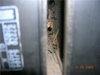 Замена салонного фильтра. Чистка вентилятора печки Р11-1c16c7ea3952.jpg