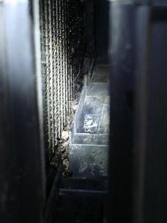 Очистка кондиционера от запахов пенным очистителем.-dsc09640.jpg