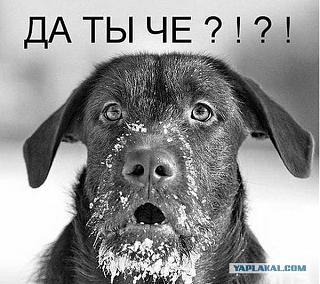Бросаем КУРИТЬ-2844275.jpg