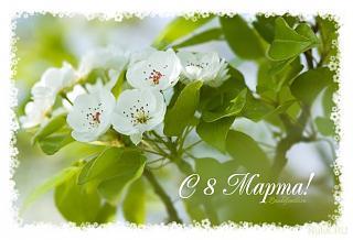 Милые девушки, С ПРАЗДНИКОМ ВАС !-1265998629_spring-cards-25.jpg