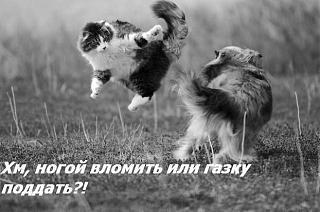 Поздравляем Сергея Темносерого с назначением!-image011.jpg
