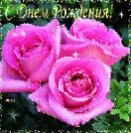 Verochka, с Днём Рождения!!!-0_a79fd_102c8ac1_s.jpg